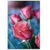Martha Guerra; Pink Rose Canvas Print 16 x 24