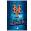 New York Mets Logo 2011