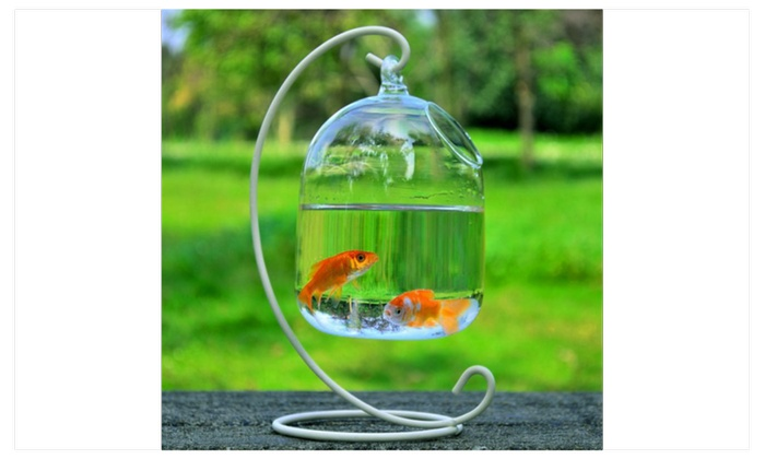 Up To 60 Off On Hanging Glass Vase Fish Tank Groupon Goods