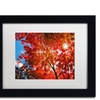 Philippe Sainte-Laudy 'Month Sun' Matted Framed Art