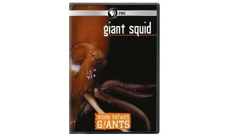 Inside Nature's Giants: Giant Squid DVD 3ea6da48-1785-4603-bcb8-d483ba375cc8
