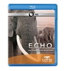 NATURE: Echo: An Elephant to Remember Blu-ray