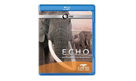 NATURE: Echo: An Elephant to Remember Blu-ray 8470ee2d-de9d-4d01-b495-d928def0a212
