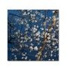 Kurt Shaffer 'Springtime at the Lake' Canvas Art