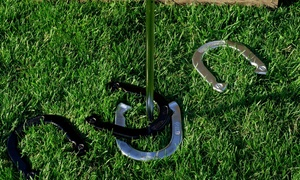 Professional Horseshoe Set (7-Piece)