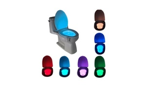 8 Color LED Toilet Night Motion Sensor Light