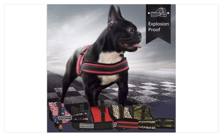 XS Size Adjustable Soft Padded Non Pull Pet Dog Puppy Harness Chest - red 5cd54826-016a-49e1-a002-a265e3a83e39
