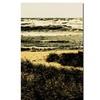Michelle Calkins 'The Lone Gull' Canvas Art