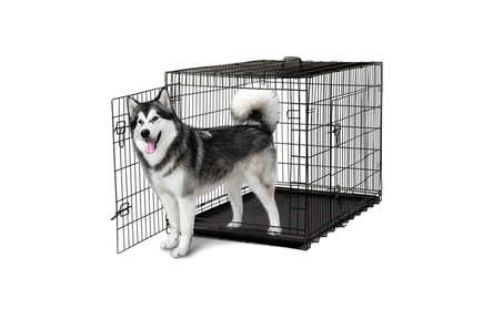 Double-Door Folding Metal Pet Carrier Dog Crate Wire Cage dcc5e2c9-685d-4ee7-9802-b4b9f74b9a59