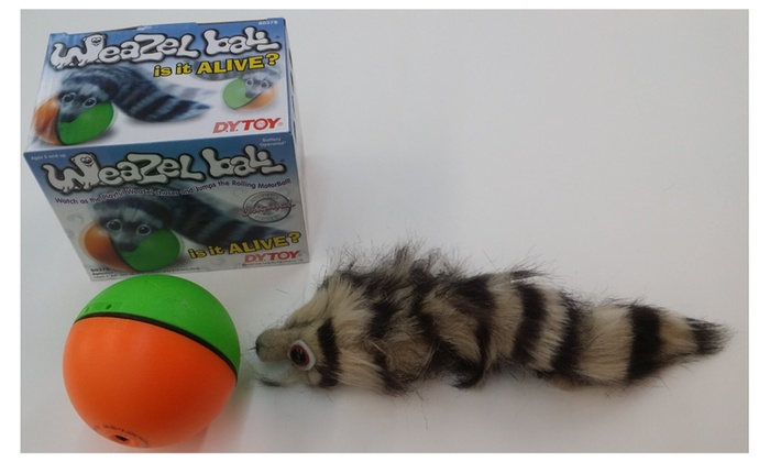 8277ed690331e Weazel weasel ball for cat dog toy | Groupon
