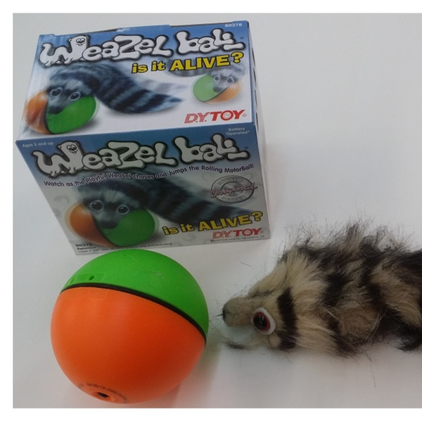 90ab9fa6a3639 Weazel weasel ball for cat dog toy
