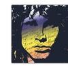 Jim Morrison 3-Piece High Definition Wall Panels