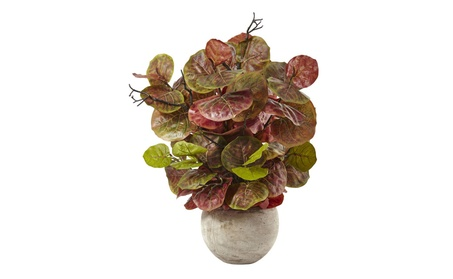 Nearly Natural Seagrape Plant in Sand Colored Bowl a2c79def-ed77-4019-9974-13fe895b65f0