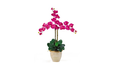 Nearly Natural Triple Stem Phalaenopsis Silk Orchid Flower Arrangement a3bde8ec-3329-4568-a70d-88d3ea9bfb27