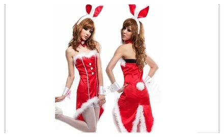 Fun Island -- Playful Christmas Bunny Costume