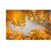 Philippe Sainte-Laudy 'Ginkgophytes' Canvas Art